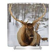 Big Rack Shower Curtain