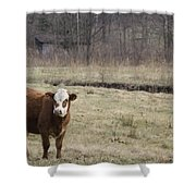 Big Red 2 Shower Curtain