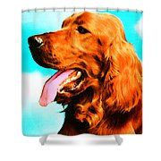 Big Red - Irish Setter Dog Art By Sharon Cummings Shower Curtain by Sharon Cummings