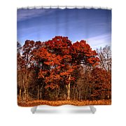 Big Red Shower Curtain