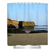 Big Rock On San Simeon Beach Shower Curtain