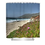 Big Sur Beach Shower Curtain by Jane Linders