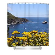 Big Sur Loves Yellow By Diana Sainz Shower Curtain