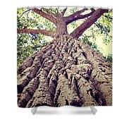Big Tree Bark Shower Curtain