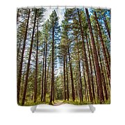 Big Valley Views Mvsta Trail Shower Curtain