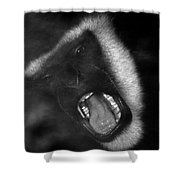 Big Yawn From This Monkey Shower Curtain