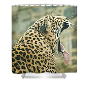 Big Yawn Shower Curtain