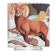Bighorn Sheep Winter Shower Curtain