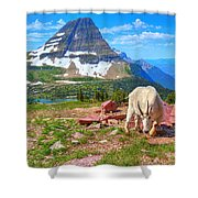 Billy Bearhat Shower Curtain