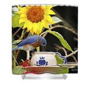 Bluebird And Tea Cup Shower Curtain