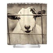 Billy G Shower Curtain
