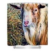 Billy Goat Closeup Shower Curtain
