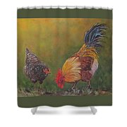 Biltmore Chickens  Shower Curtain