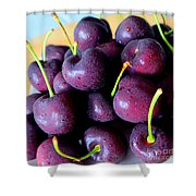 Bing Cherries Shower Curtain
