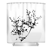 Biochemistry Of Winter 2 Shower Curtain