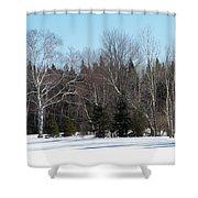 Birch And Evergreen Shower Curtain