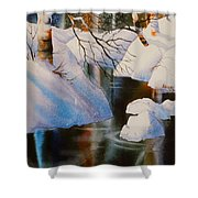 Birch At Russian Jack Park Shower Curtain