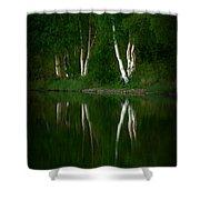Birch Reflection Shower Curtain