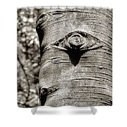 Birch Tree Spirits Shower Curtain
