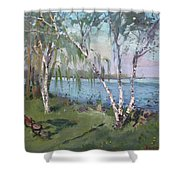 Birch Trees By The River Shower Curtain