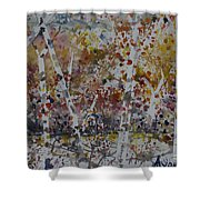 Birch Trees In Fall Shower Curtain