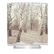 Birch Trees In The Snow. Winter Poems Shower Curtain