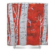 Birch Woods Shower Curtain