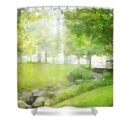 Birches And Stream Shower Curtain
