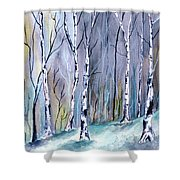 Birches In The Forest Shower Curtain