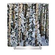 Birches In The Winter Shower Curtain