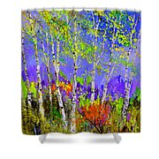 Birchtrees 56412 Shower Curtain