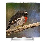 Bird 1 Shower Curtain