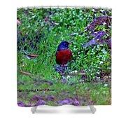 Bird 3 Shower Curtain