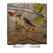 Bird And Berries Shower Curtain