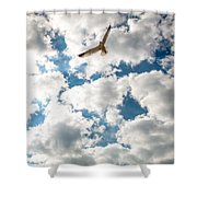 Bird And The Clouds Shower Curtain