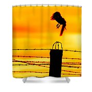 Bird Flying Off From Prison Fence Shower Curtain