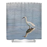 Bird In A Pond Shower Curtain