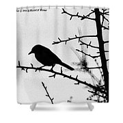 Bird In B And W Shower Curtain
