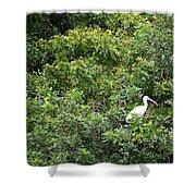 Bird In Bush Shower Curtain