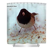 Bird In Snow Shower Curtain