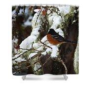 Bird In Snow Shower Curtain