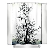 Bird In The Branches Shower Curtain