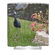 Bird In Yard Shower Curtain