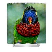Bird In Your Face  Shower Curtain