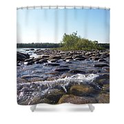 Bird Island Shower Curtain