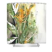 Bird Of Paradise 08 Elena Yakubovich  Shower Curtain by Elena Yakubovich