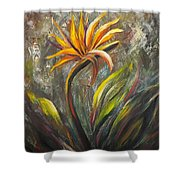 Bird Of Paradise 63 Shower Curtain