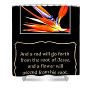 Bird Of Paradise Flower With Bible Quote From Isaiah Shower Curtain