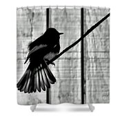 Bird On A Wire I Shower Curtain
