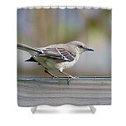 Bird On The Fence Shower Curtain